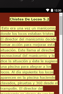 Chistes De Locos 5 - screenshot