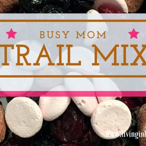 Busy Mom Trail Mix