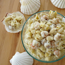 Gourmet Mac and Cheese with Rock Shrimp