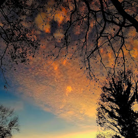 by Dallas Chalkley Jr. - Landscapes Cloud Formations