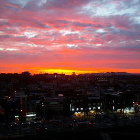 Sunset City Sky by Tridibesh Indu - City,  Street & Park  Skylines ( colour, sky, nature, sunset, outdoor, seoul, cityscape, samsung, landscape,  )