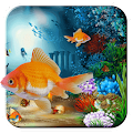 Download Aquarium Fish Live Wallpaper APK for Android Kitkat