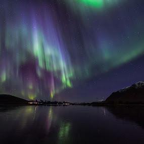 Aurora colors by Benny Høynes - Landscapes Waterscapes ( colors, northern lights, aurora borealis, seascape, landscapes, norway )
