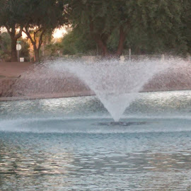Fountain At The Park by Amber Horton - City,  Street & Park  Fountains ( city parks, fountains, arizona, landscape )
