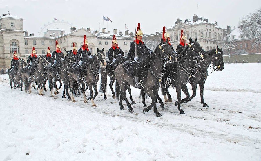 Horseguards in the snow by Brian Micky - News & Events Entertainment