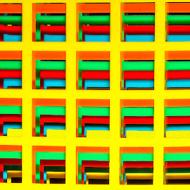 by Nancie Rowan - Abstract Patterns