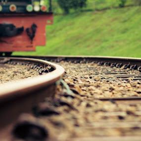 The Curve by Arifandi Raditya - Transportation Trains ( railways, train, scenery, transportation, landscape )