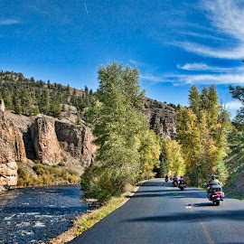 Touring Colorado  by Martin Allred - Transportation Motorcycles ( countryside, harley davidson, tour bikes, touring colorado, rocky mountains, open roads, baggers, hog ride )
