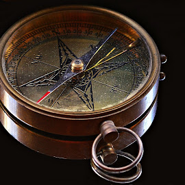 Mariners' Compass by Prasanta Das - Artistic Objects Antiques ( navigation, mariner, compass )