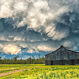 Iowa Summer by Rob Darby - Landscapes Weather ( clouds, stormy, ominous, iowa, barn, thunderstorm, grass )