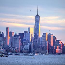 NYC skyline by Ayyappan Nair - City,  Street & Park  Skylines