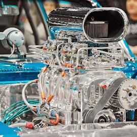 Chevy Camaro SS by Tony Bendele - Transportation Automobiles ( car, camaro, cars, vehicle, ss, chevy )