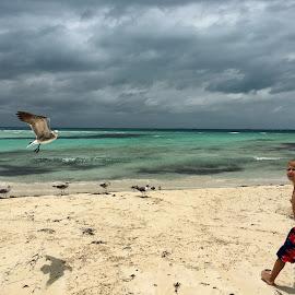On the beach by Zuzana Kapolkova - Instagram & Mobile iPhone
