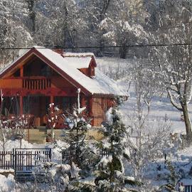 House by Marija Čaušić - Buildings & Architecture Homes ( sky, winter, tree, snow, house )