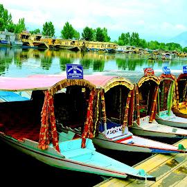 Dal Lake by SANGEETA MENA  - Transportation Boats