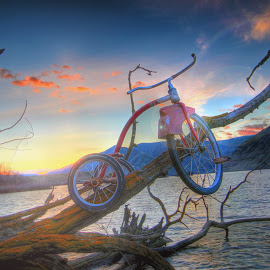 Heart Cloud by Eric Demattos - Transportation Bicycles ( red, tricycle, eric demattos, sunset, river )