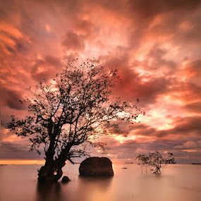Red mist by Fre Ghothic - Landscapes Waterscapes ( cannon 550d )