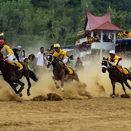Horse Race in The land of Minang Kabau by Leovin Agustim - Sports & Fitness Other Sports