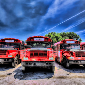 Red Buses by Sarah Hauck - Transportation Automobiles ( bus, red, city kidz, school bus )