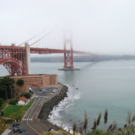 Bridge Into the Fog by Lois Rockwell - Buildings & Architecture Bridges & Suspended Structures