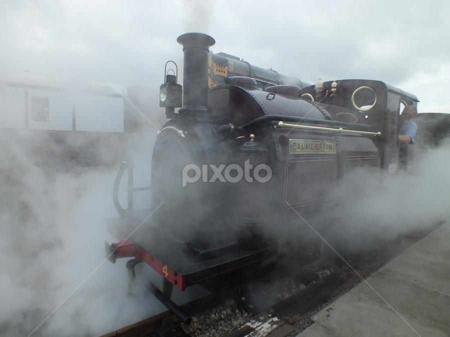 Palmerston by M Darlow - Transportation Trains