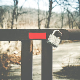 Or to Keep Mother Nature In by Rob Heber - Artistic Objects Other Objects ( natural light, hills, blocked path, matte, rusty, landscape, padlock, entrance, country road, shallow depth of field, nature, rusting, tree line, trail, path, detail texture, closeup, rural road, metal gate, lock, blocking the road, plant life, close up, rural, gate, outdoors, rusted, red sticker, selective focus, trees, locked, warning, bare trees, iron gate )