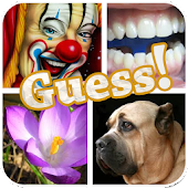Free Download PICS QUIZ - Guess The Word APK for Samsung