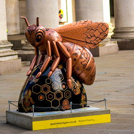 Bee in the city 2 by Petrica Manzala - City,  Street & Park  Street Scenes ( gold, bee, street, yellow )