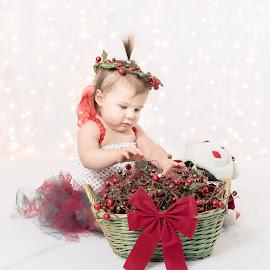 Christmas Fairy  by Sondra Sarra - Babies & Children Babies ( sweet, tutu, wings, christmas, baby, cute )