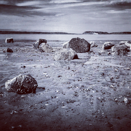 Beach rocks by Todd Reynolds - Instagram & Mobile Android