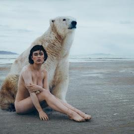 Polar by Chris Madsen - Digital Art People