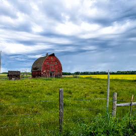 Old Red Barn by Corey Yeatman - Buildings & Architecture Decaying & Abandoned ( old, red barn, alberta, barn, abandoned )