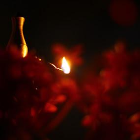 Darkness Went Away.. by Gokul Rajenan - Digital Art Things ( #blackish #redish #flowers #burning #lamp )