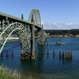 by Tammy Cassford - Buildings & Architecture Bridges & Suspended Structures