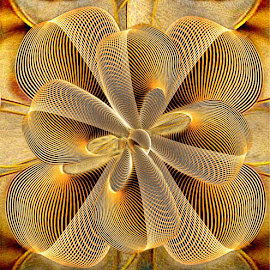 DESERT ROSE by Carmen Velcic - Digital Art Abstract ( abstract, roses, flowers, leaves )