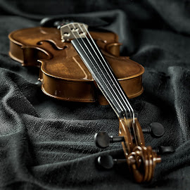 by Dragan Rakocevic - Artistic Objects Musical Instruments