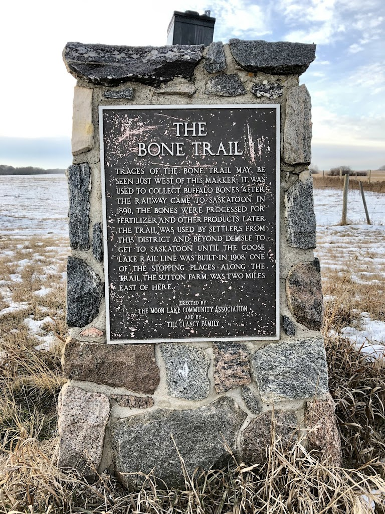 THE BONE TRAIL Traces of the Bone Trail may be seen just west of this marker. It was used to collect buffalo bones after the railway came to Saskatoon in 1890. The bones were processed for fertilizer ...