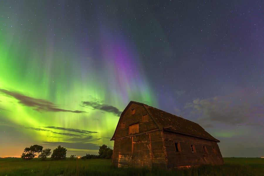 Barn Aurora by Nebojsa Novakovic - Landscapes Starscapes ( clouds, canada, northern lights, aurora borealis, big dipper, oak hamock marsh, landscape, moonlight, ohm, nightscape, manitoba, shed, barn, nature, nelepl, stars, nikon d600, stargazing, 14-24, dancing sky, starscape, abandoned )