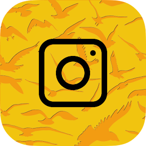 Bird Photo Editor for Android