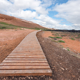 The Boardwalk by Phyllis Plotkin - Landscapes Prairies, Meadows & Fields ( iceland, dirt, boardwalk, fields )