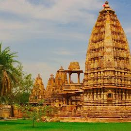 Temple in Rajasthan  by Anjana Chakraborti - Buildings & Architecture Places of Worship ( temple, rajasthan, mata, karni, india )