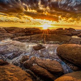 Golden Light.jpg