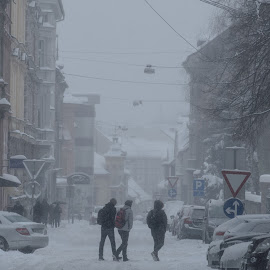 Snow in city by Dušan Gajšek - City,  Street & Park  Street Scenes