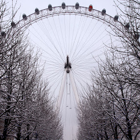 The London Eye 10 by Bill Green - City,  Street & Park  Vistas ( wheel, london, snow, white, trees, red capsule, the london eye )
