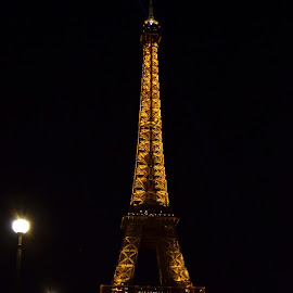 Eiffel Tower 2013 by Carrie Cadenas - Buildings & Architecture Public & Historical ( eiffel tower paris france )