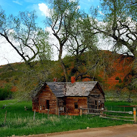 The old homestead in red canyon by LaDonna McCray - Buildings & Architecture Decaying & Abandoned ( old, building, ancient, wooden, ruin, red canyon, wyoming, landscape, rustic, homestead )