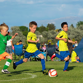 All Eyes On The Ball by Garry Dosa - Sports & Fitness Soccer/Association football ( teams, may, outdoors, boys, movement, action, summer, children, game, running, soccer )