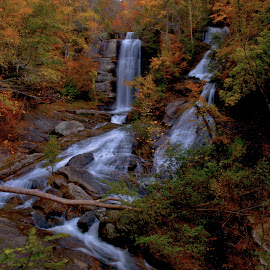 Twin Falls by Bob Buurman - Landscapes Forests