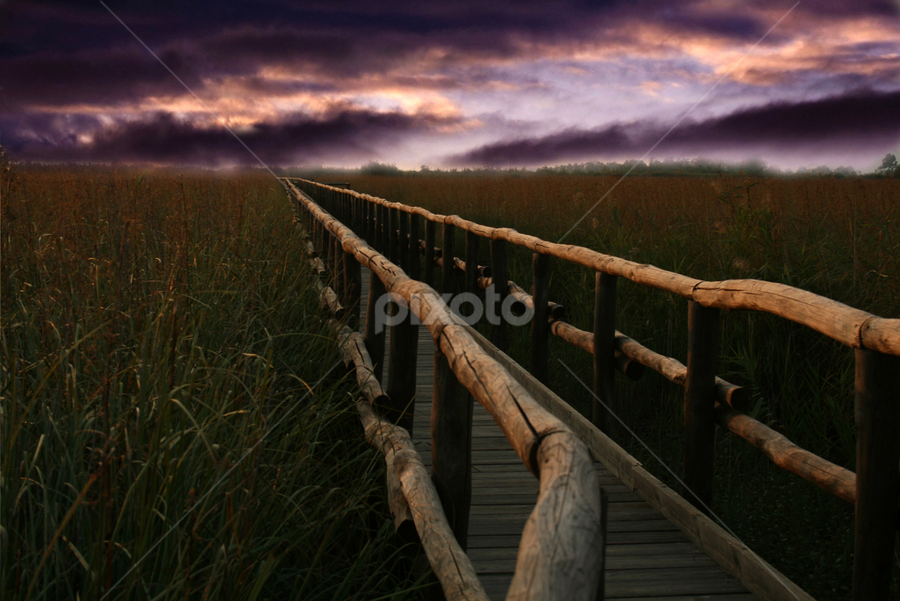 Mystical Path by Blanka Bareza - Landscapes Travel ( pwcpaths )