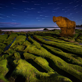 Co Thach Night by Dzung Tran - Landscapes Beaches ( sky, binh thuan, co thach, star, moss, stone, night, bank, beach, tuy phong, rocks )